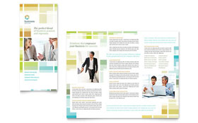 Business Solutions Consultant - Microsoft Word Tri Fold Brochure
